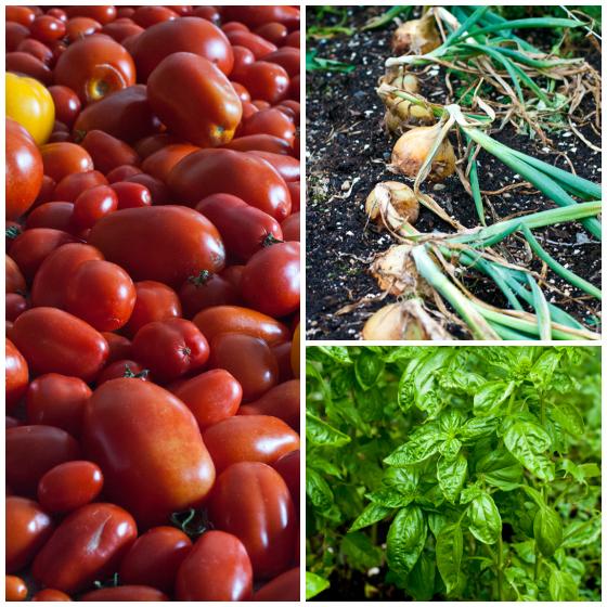 Tomato Jam - A Family Feast