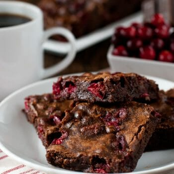 Bog Hollow Cranberry Brownies - A Family Feast