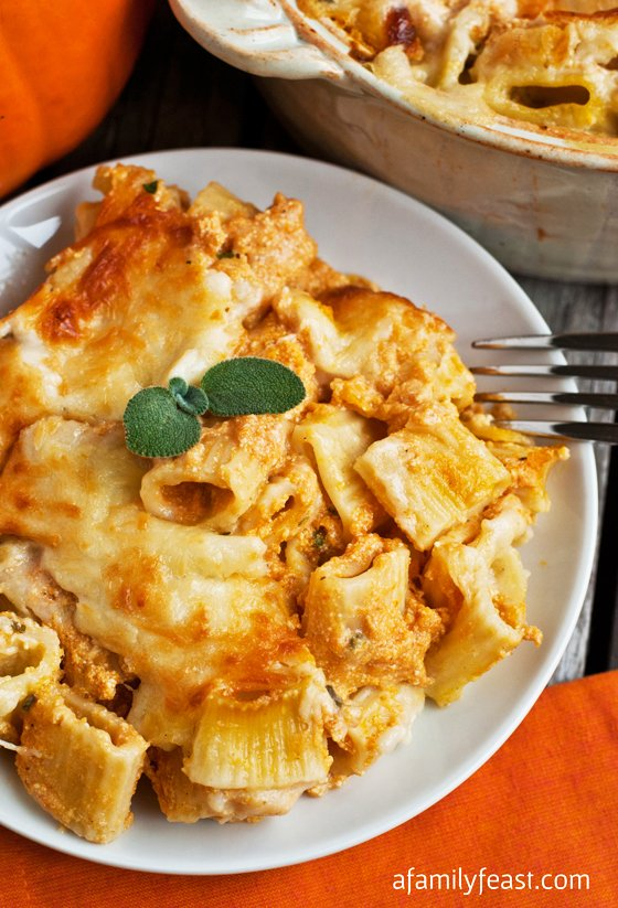 Creamy Pumpkin Pasta Bake - A creamy, cheesy comforting fall dinner idea! So easy and delicious!