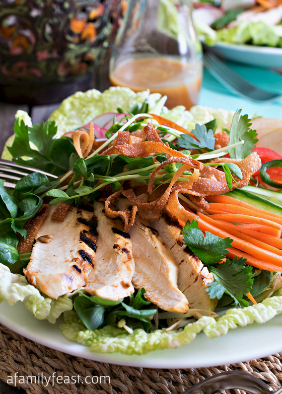 This Asian Chicken Salad is full of tender grilled chicken, fresh, crisp vegetables and has the most fantastic Asian Citrus Dressing! So delicious!