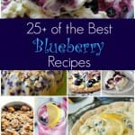 25+ Best Blueberry Recipes