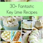 30+ Fantastic Key Lime Recipes