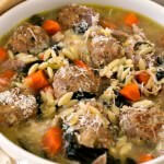 Turkey Meatball Soup with Orzo - A Family Feast