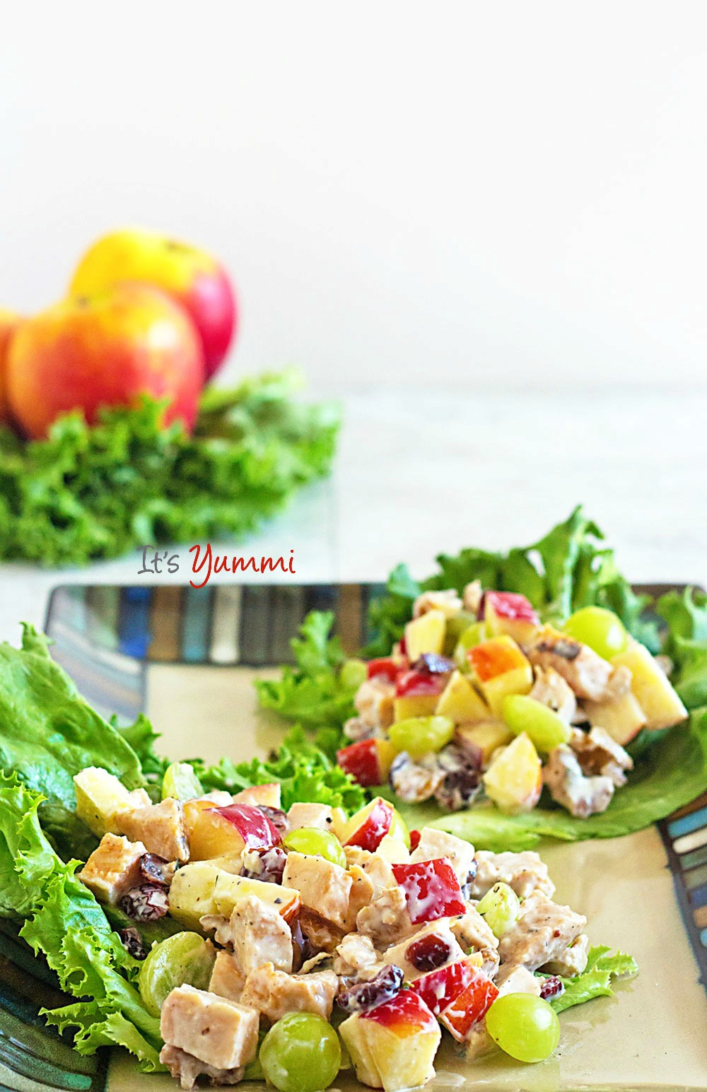 This Healthy Chicken Waldorf Salad from It's Yummi is just one of over 20 delicious chicken salad recipes on A Family Feast