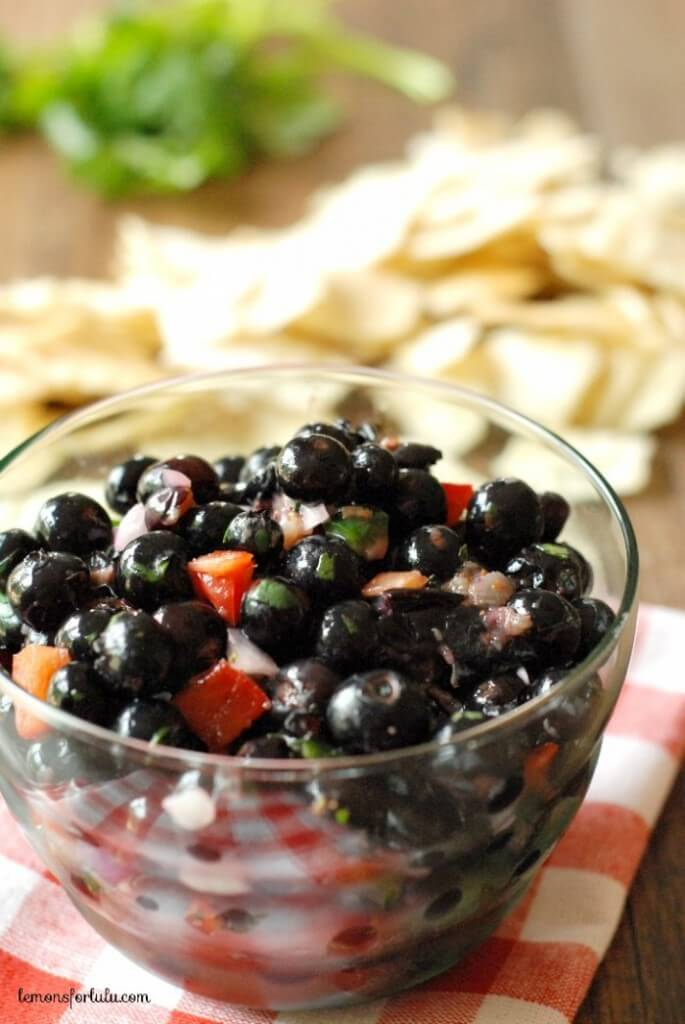 Blueberry Salsa - One of over 25 patriotic holiday recipes to help you celebrate Memorial Day, 4th of July, Flag Day, or any day!