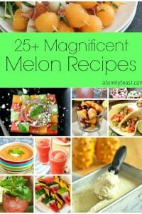 25+ Magnificent Melon Recipes - A Family Feast