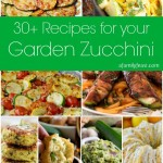 30+ Recipes For Your Garden Zucchini