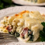 White Lasagna Chicken Rollups