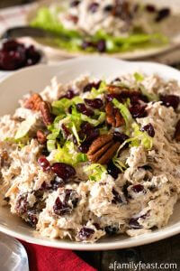 Turkey Salad with Cranberries and Toasted Pecans - A Family Feast