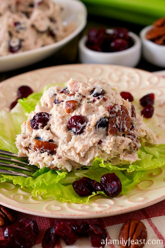 A delicious Turkey Salad with Cranberries and Toasted Pecans. Perfect for cooking with leftover Thanksgiving turkey!