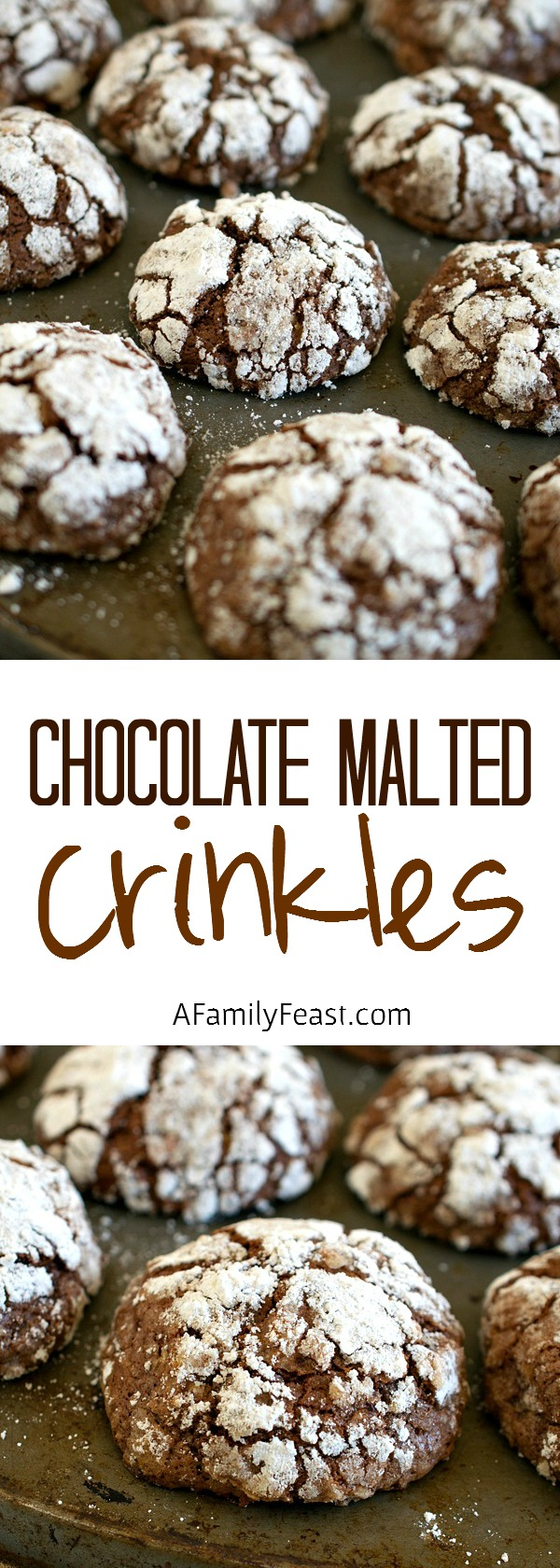 Chocolate Malted Crinkles - A delicious variation on the classic Chocolate Crinkles Cookie recipe!
