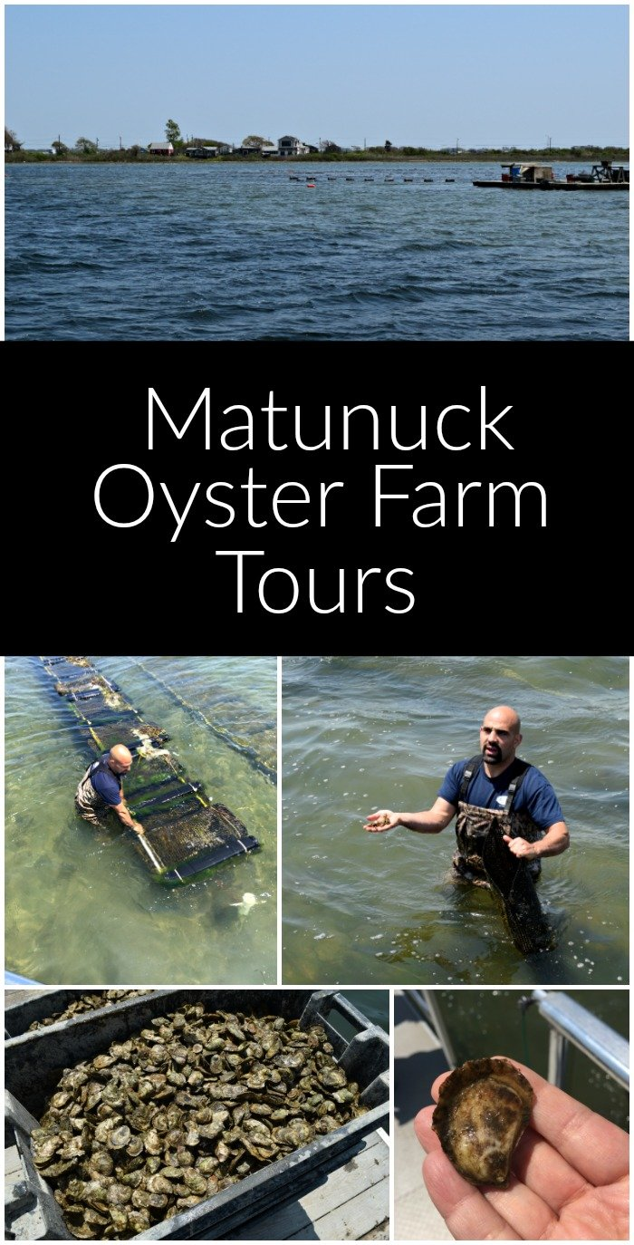 Matunuck Oyster Bar Stew - A Family Feast