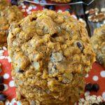 Pumpkin Oatmeal Chocolate Chip Cookies - A Family Feast