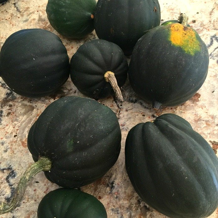 Acorn Squash and Pear Soup - A Family Feast
