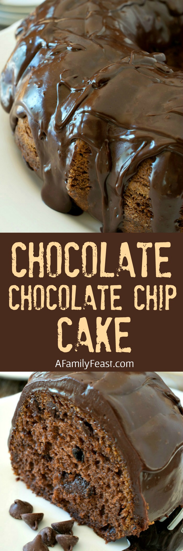 Kathy's Chocolate Chocolate Chip Cake - A Family Feast
