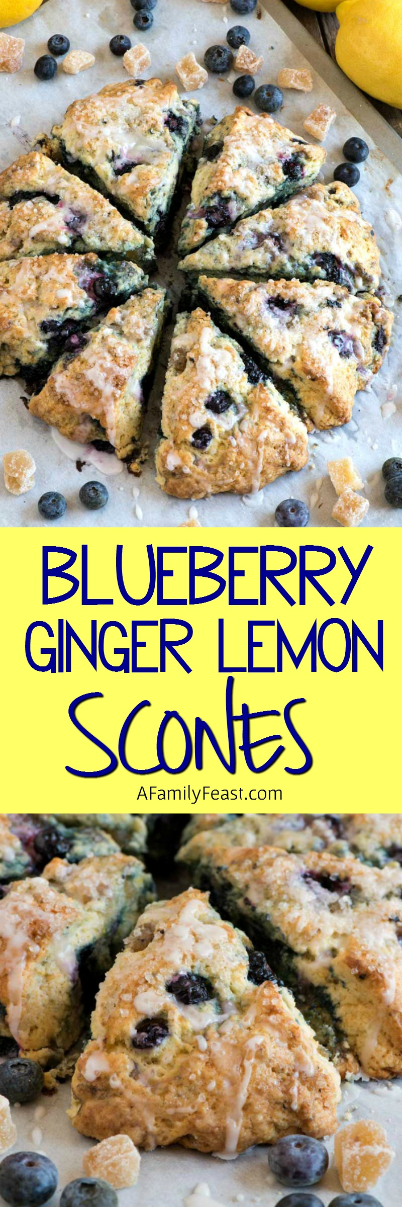 Blueberry Ginger Lemon Scones - Sweet buttery scones bursting with flavor!