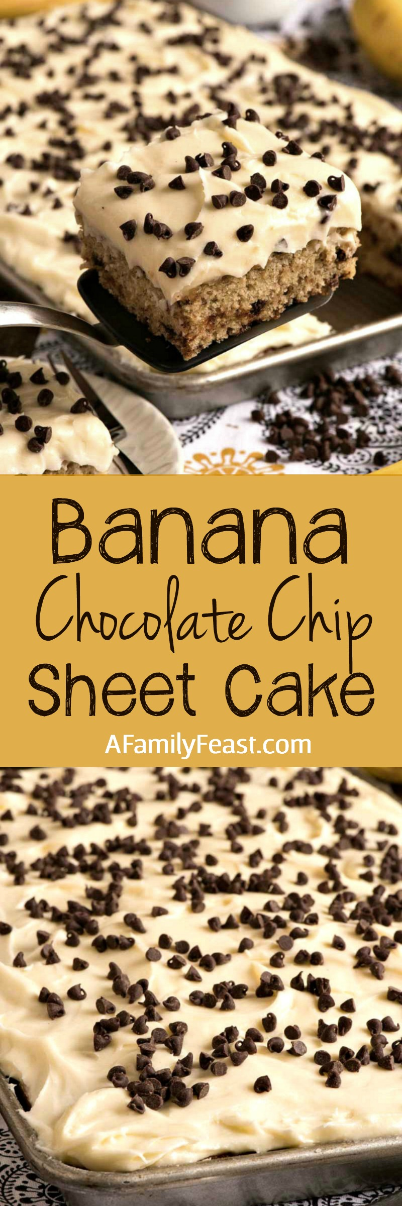 Banana Chocolate Chip Sheet Cake with Cream Cheese Frosting - Easy, moist and delicious! Easily the best sheet cake you'll ever make.