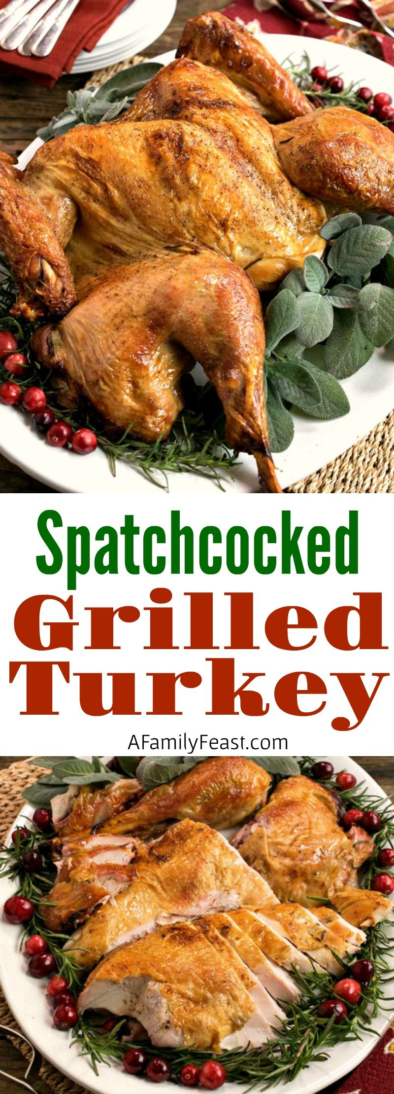 Make this delicious Grilled Turkey recipe for the holidays! It cooks up quickly and deliciously!